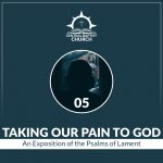 Taking Our Pain to God: The Psalms of Lament